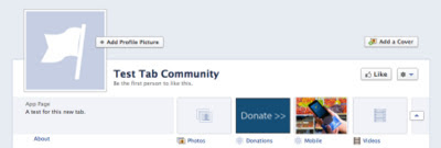 Online Donations in Facebook